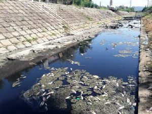 Chi tiết quy trình xử lý nước thải sinh hoạt đạt QCVN